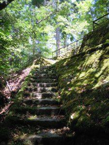 八景を求めて、苔いっぱいの階段を下る。